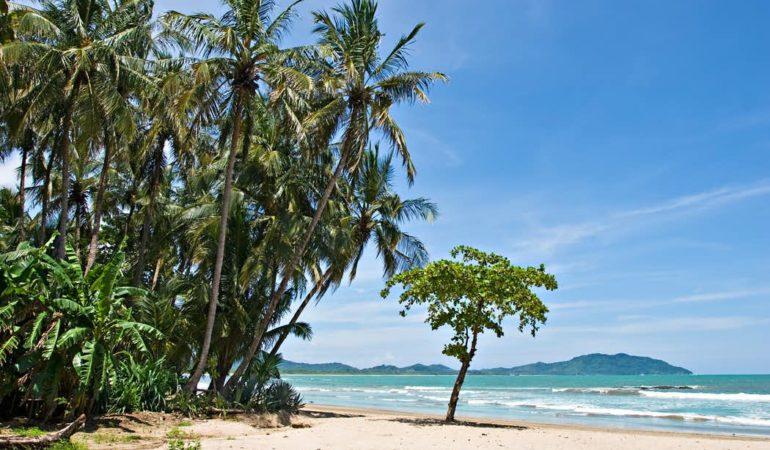 Your Costa Rica Pacific Coast Road Trip Guide